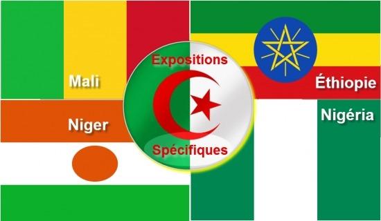 """Expositions spécifiques en Afrique """" Mali , Éthiopie, Niger et Nigeria"""""""